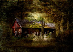 Abandoned (Birgitta Sjostedt) Tags: barn abandoned fairytale wood old fence building mysterious magic book texture landscape