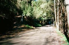 Basin-Olinda Road (2) (Matthew Paul Argall) Tags: fujifilmsilvi70 fujifilmzoomdate70 35mmfilm ektar100 kodakektar100 100isofilm road street