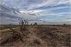 Tarde de campo (Fernando Forniés Gracia) Tags: españa aragón zaragoza calatorao naturaleza campo airelibre nubes cielo árbol landscape paisaje nevero aljibe