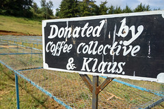 Actually donated by our guests, as it was money we collected from all our coffee sales on our 10 year birthday (Coffee Collective) Tags: coffee kenya directtrade nyeri kieni mugaga karatina coffeecollective
