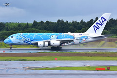 All Nippon Airways Airbus A380-841 JA381A (Inspiration of Japan Livery). (* Raymond C.*) Tags: all nippon airways ana nh airbus a380 a388 ja381a nrt rjaa
