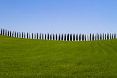 _VO26090 (Foto Massimo Lazzari) Tags: sr2 dacastiglionedorciaabagnisfilippo