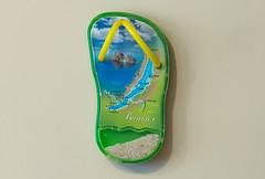 Baikal (Osdu) Tags: magnet fridgemagnet refrigeratormagnet souvenir travel world lakebaikal russia