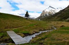 Pian Cales , 1800 m (dino_x) Tags: panorama landscape mountains alpi alps switzerland montagna allaperto nature paesaggio roccia
