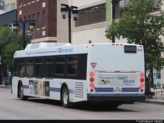 Winnipeg Transit #164 (vb5215's Transportation Gallery) Tags: winnipeg transit 2011 new flyer d40lfr