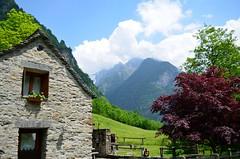 Sonogno (dino_x) Tags: panorama landscape mountains alpi alps switzerland montagna allaperto nature paesaggio roccia