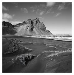 Vestrahorn, Iceland (2019) (phamnes) Tags: stokksnes vestrahorn iceland 6x6 120film ishootfilm epsonv600 filmphotography blackandwhitefilm mediumformatfilm distagon zeisslens acros100 neopanacros fujifilm hasselblad501cm hasselblad