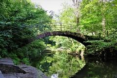 Roman Bridge & the River Goyt, Strines, Cheshire (HighPeak92) Tags: bridges packhorsebridges romanbridge reflections rivers rivergoyt strines cheshire canonpowershotsx700hs