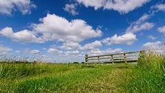 Fenced Meadow (Hindrik S) Tags: fence hek hikke gatter homeie grass gers gras green grien vert blue blau blauw clouds cloud wolken wolk panorama scenery scenic landscape landschap lânskip sigma1020mmf4056dcexhsm sigma sonyphotographing sony sonyalpha amount minoltaamount landschaft 10mm f10 2019 fryslân friesland netherlands nederland scenicsnotjustlandscapes on1pics on1photoraw2019
