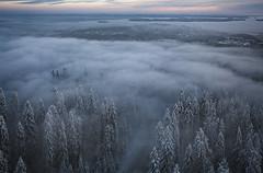Kaupunki pilvimetsän sylissä (JP Korpi-Vartiainen) Tags: kuopio puijo metsä forest pohjoissavo joulukuu december talvi winter ilmakuva air näköalapaikka belvedere finland sumu fog