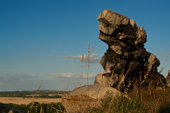 ein Stück 😈 Teufelsmauer von gestern Abend (Froschkönig Photos) Tags: 6000 a6000 ilce6000 sonyalpha6000 a6k flektogon carlzeissjena bokeh mauer teufelsmauer felsen harz