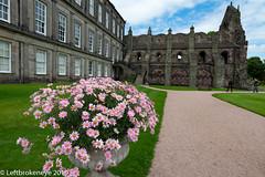Holyrood Castle Edinburgh (leftbrokeneye3) Tags: castle nikon d800 burg leftbrokeneye leftbrokeneye3 nikond800 flickraward nikkor 2019 flickr holyroodcastle