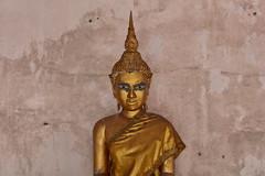 Bangkok – Wat Bowon Mongkhon (Thomas Mülchi) Tags: 2019 bpg bangkokphotographersgroup photowalk krungthonphotowalk bangphlat bangphlatdistrict thailand krungthon bangkok watbowonmongkhon wat buddha buddhism buddhisttemple temple bangkokmetropolitanregion happyplanet asiafavorites