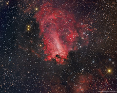Omega Nebula M17 first light with WO 12 RC (Terry Hancock www.downunderobservatory.com) Tags: williamoptics wo12rc qhy qhyccd qhy16200 sky space astronomy astrophotography astroimaging messier m17 milkyway grandmesaobservatory universetoday