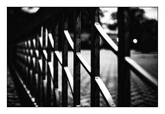 60 [titre after  Anonymous was leaving] (Armin Fuchs) Tags: arminfuchs lavillelaplusdangereuse würzburg anonymousvisitor thomaslistl wolfiwolf jazzinbaggies kulturspeicher fence 35mm hff
