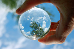 Summer Seen Through A Lensball. (dccradio) Tags: lumberton nc northcarolina robesoncounty outdoor outside outdoors lensball tenphy glassball glassballphotography lensballphotography tree greenery foliage sky bluesky july july4th independenceday summer summertime holiday thursday afternoon goodafternoon thursdayafternoon nature clouds cloudformation nikon d40 dslr
