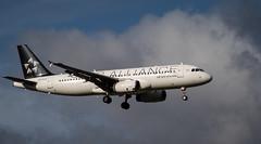 Air New Zealand A320 ZK-OJH (johnstewartnz) Tags: canon canonapsc apsc eos 100canon 7dmarkii 7d2 7d canon7dmarkii canoneos7dmkii canoneos7dmarkii 80200mm 80200 ef80200 plane aviation aircraft airnewzealand airbus airbusa320 a320 a320232 zkojh staralliance