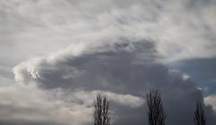 Cloud (johnstewartnz) Tags: canon canonapsc apsc eos 100canon 7dmarkii 7d2 7d canon7dmarkii canoneos7dmkii canoneos7dmarkii 80200mm 80200 ef80200 cloud