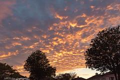 Clouds at Sunset - DSC_0622 (John Hickey - fotosbyjohnh) Tags: 2019 cabinteely july2019 sunset dublin ireland nikond750 nikon flickr sky clouds