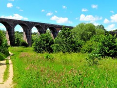 Reddish Vale Country Park, Stockport, UK (olwynam1) Tags: viaduct reddishvale grass trees outdoors nature