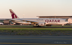 QTR_A7BFK_B77F_BRU_JUN2019_TO_25R (Yannick VP) Tags: civil commercial cargo freight freighter transport aircraft airplane aeroplane jet jetliner airliner qr qtr qatar airways boeing b777 777200 b77f 77x f a7bfk departure takeoff runway rwy 25r airside brussels airport bru ebbr belgium be europe eu june 2019 aviation photography planespotting airplanespotting tripleseven