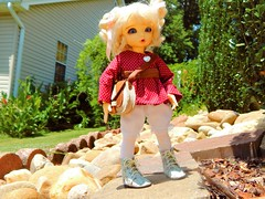 Little Purse Gremlin (Forest_Daughter) Tags: fairyland littlefee ante bjd balljointed doll