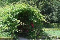 Versailles, Hameau de la Reine (liakada-web) Tags: france frankreich fra îledefrance versailles hameau hameaudelareine nikond7500