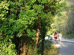 (Joan Pau Inarejos) Tags: olivella garraf catalunya julio 2019 bosque pequeños verde