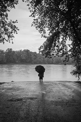 Step Into the Rainy Potomac (John Brighenti) Tags: outside outdoors summer july fourthofjuly montgomerycounty maryland nature edwardsferry river blackandwhite bw stream water rain moody atmospheric weather road trees person umbrella dark mysterious woman human monochrome poolesville sony alpha a7rii ilce7rm2 sonyshooter bealpha nex ilce emount femount fullframe sel28f20 wind angle 28mm