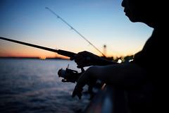 Fishing Rod (dtanist) Tags: nyc newyork newyorkcity new york city sony a7 7artisans 35mm brooklyn bath beach shore promenade gravesend bay fisherman fishing rod pole silhouette