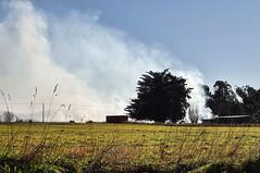 Smoke..... (flying-leap) Tags: newzealand northcanterbury winter rural sony sonydscrx10m4 sonydscrx10iv sonyrx10iv farm ruralnz 52in2019 outside countryside smoke controlledburnoff farming