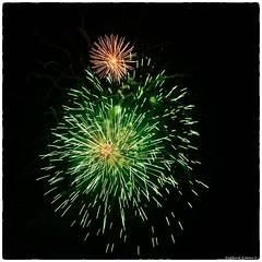 Fire Flowers (RKop) Tags: raphaelkopanphotography d500 1020mmf56 nikon cincinnati 4thofjuly fireworks