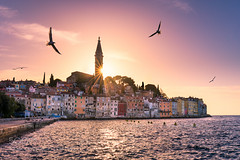 Croatia Sunset (Dr. Ernst Strasser) Tags: ifttt 500px rovinj croatia skyline sun summer sunset istria old town panorama landmark coast city adriatic sea building historic famous bird seagull architecture mediterranean cityscape venetian tower ernst strasser unternehmen startups entrepreneurs unternehmertum strategie investment shareholding mergers acquisitions transaktionen fusionen unternehmenskäufe fremdfinanzierte übernahmen outsourcing unternehmenskooperationen unternehmensberater corporate finance strategic management betriebsübergabe betriebsnachfolge