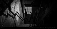 Street Level (Luther Roseman Dease, II) Tags: street monochrome shadows contrejour silhouette blackandwhite depth light framing lines lowkey skancheli noireetblanc outdoors people public darkened size walking candid chiaroscuro atmosphere shape humanelement texture