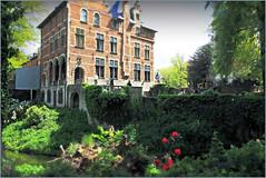 Château de Grand-Bigard, Dilbeek, Brabant flamand, Belgium (claude lina) Tags: claudelina belgium belgique belgië grandbigard floraliabrussels brabantflamand fleurs flowers tulipes tulips parc châteaudegrandbigard