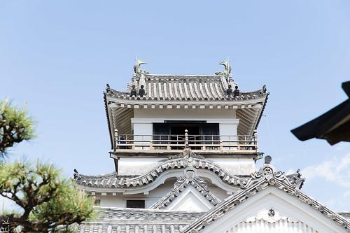 Kochi castle5