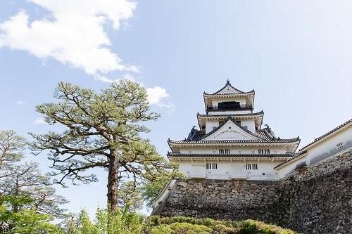 Kochi castle3