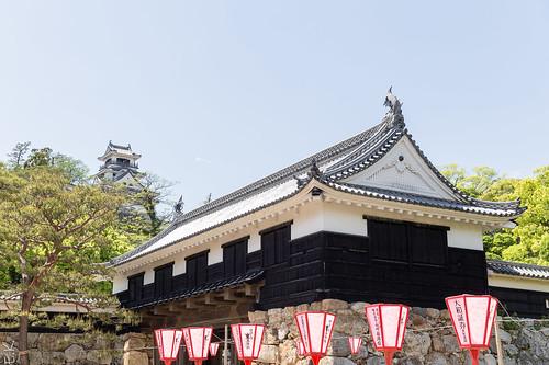 Kochi castle2