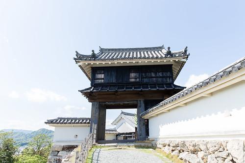 Kochi castle6