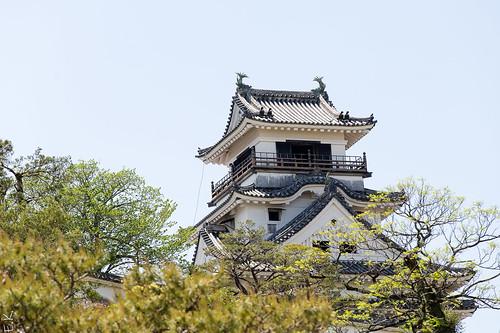 Kochi castle1