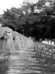 Little Streams (ucn) Tags: berlin mitte fountain brunnen zeissikondonata2277u tessar135cmf45 9x12 sheetfilm