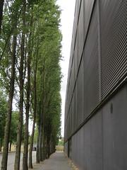 Toenadering (Merodema) Tags: bomen stad city building trees close tall green grey