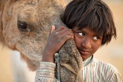 India, Gypsy boy in Pushkar (Dietmar Temps) Tags: ajmer asia camel camelfair camelherder cattle desert gypsy india kartikmela moustache nomadicpeople nomadictribe pushkar rabari rajasthan romanipeople sand shepard thardesert travel tribalpeople turban