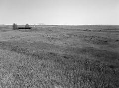 Abandoned Railway Line (LarsHolte) Tags: pentax 645 pentax645 645n 6x45 smcpentaxa 35mm f35 120 film 120film analog analogue kosmo foto mono 100iso mediumformat blackandwhite classicblackwhite bw monochrome filmforever filmphotography aph09 rodinal ishootfilm larsholte homeprocessing usa southdakota scenic badlands highway sd44 railway