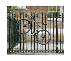 Urban Spidernet (Thomas Listl) Tags: thomaslistl color bike bicycle caught fence lines geometry urban hff fencedfriday london uk greatbritain england wall house wheels diagonal