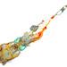 freshly caught colorful squid             XOKA1107b2s