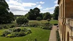 """View from my """"Office"""" (EastMarple1) Tags: view countryside garden parkland cows trees mansion basildonpark trust berkshire england palladian c18th summer nationaltrust"""