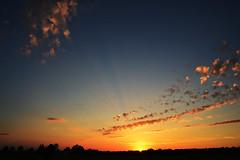 Oberschleißheim - Sunset (cnmark) Tags: germany deutschland schleisheim oberschleisheim sunset abandoned nature sonnenuntergang flash natur disused blitz runway flugplatz airfield verlassen landebahn startbahn ednx ©allrightsreserved aufgegeben