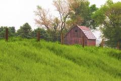 Iowa Icon (wdterp) Tags: barn fence roadside hff fencefriday iowa usa