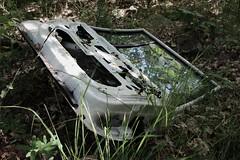 Car door (Irmzaq photography) Tags: abandoned abandonedphotography photography broken forgotten nature naturephotography cardoor car